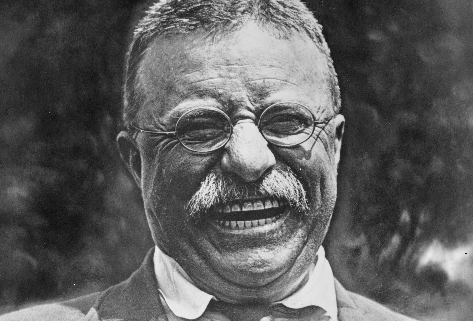 Success Quote From Teddy Roosevelt